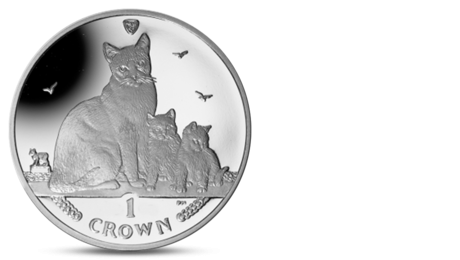 IOM 1 Crown Snowshoe Cat 2014