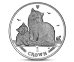 IOM 1 Crown Cat Siberian 2013